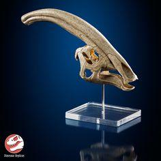 ArtStation - 3D printed Parasaurolophus skull, Dinosaur Replicas Mushroom Images, Blender 3d, Sculpting, 3d Printing, Lion Sculpture, Skull, Model Kits, Statue, Artwork