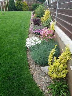 Small Garden Design, Outdoor Areas, Container Gardening, Garden Landscaping, Planters, Home And Garden, Backyard, Exterior, Landscape