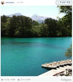 季節や時間によって色が変化する。「不思議な沼」を知っていますか? | TABI LABO