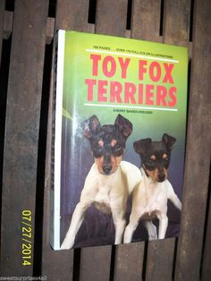 toy fox terriers dog care by sherry baker-kreuger