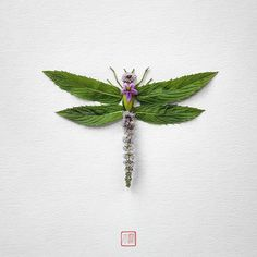 Natura Insects: A series of Insects made of Flowers