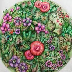 Selvamagicaoficial Selvamagica Lostocean Magicaljungle Magicaljunglecoloringbook Wonderfulcoloring Coloringbookforadults Coloringbook
