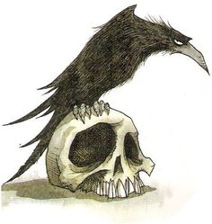 raven tattoo by nohedidn't (not a fan of skulls, but the style of the raven is quite amusing)