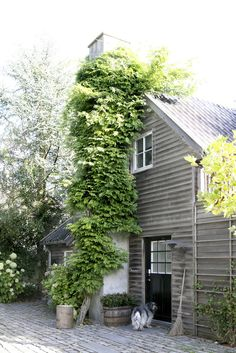 greige design interiors shop and inspiration for the home Exterior Design, Interior And Exterior, Rustic Exterior, Architecture Renovation, Rose House, Outdoor Spaces, Outdoor Decor, Scandinavian Home, Next At Home