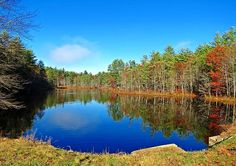 New England landscape scene captured in late October at Ice Pond in West Swanzey, New Hampshire. There is still some Autumn foliage of red on some of the trees surrounding the pond. The blue of the sky and puff of white clouds, along with the trees are reflected on the calm water surface. Image captured on a beautiful morning. Ducks and Geese are off in the distance. This pond has just recently filled up again.