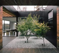 Amazing house design in Tasmania with semi enclosed spaces around a central kitchen, with two interior patios and open space living & dining areas by Room 11 Courtyard Design, Patio Design, Exterior Design, Interior And Exterior, Garden Design, Modern Courtyard, Courtyard Ideas, Indoor Courtyard, Internal Courtyard