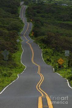 Crazy Road On Maui, Hawaii...so want to be able to take this road again! 20 years living on Maui is never enough!
