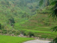 GARUT, Jawa Barat