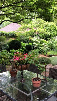 Conception De Jardin Japonais - New ideas Jardim Vertical Diy, Vertical Garden Diy, Vertical Gardens, Japanese Garden Design, Garden Landscape Design, Japanese Gardens, Wooded Backyard Landscape, Feng Shui Garden Design, Japanese Garden Backyard