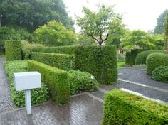 Broo may refer to: Garden Design, Garden Deco, Plants, Woodland Garden, Country Gardening, Landscape Design, Lush Garden, Hedges, Modern Garden