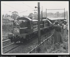 Singleton, C. C. [4001 & 2 Blue ALCOS and Royal Train (Sydney-Newcastle) passing Duffy Avenue, Thornleigh, New South Wales, 9 February 1954] [picture] 1954. 1 photograph : b ; 8.2 x 10.5 cm. Part of Buckland, John L 1915-1989. Buckland collection of railway transport photographs [picture]. [ca. 1930-1988] From the National Library of Australia collection http://www.nla.gov.au/apps/cdview/?pi=nla.pic-vn3258176 nla.pic-vn3258176