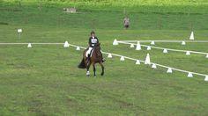 MATAMATA Horse Trial - dressage 2016