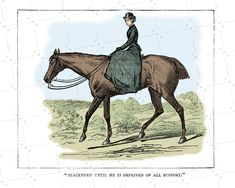 Antique print of Victorian lady horse riding sidesaddle set of 4 engravings Victorian Ladies ephemera gift for mom
