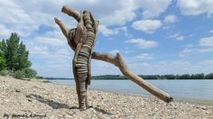 Driftwood art from Hungary by tamas kanya by tom-tom1969 on DeviantArt