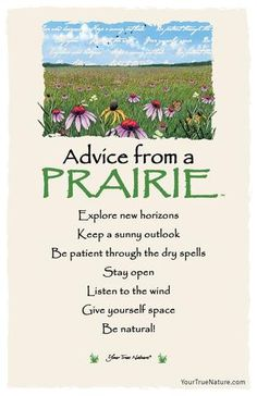 """Advice from a Prairie. Just today I saw a line of t-shirts with advice from various flowers. So glad Spring has sprung! Page March 12 by Mark Nepo in THE BOOK OF AWAKENING made me reflect on the """"Advice from Nature"""" sayings. Advice Quotes, Wisdom Quotes, Life Quotes, Quotable Quotes, Inspirational Artwork, Travel Picture, Guter Rat, Dr Seuss, Animal Spirit Guides"""