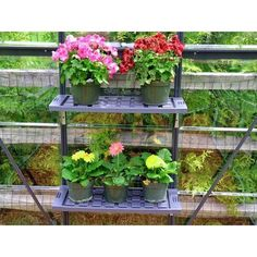 """Accessorize your Palram greenhouse with this twin shelf kit to make your nursery as functional as possible. Constructed with easy-to-clean PVC plastic, each shelf is capable of supporting up to 20 kg and comes with brackets and fasteners needed to mount onto your greenhouse wall. These shelves easily dismount so you can hose down any excess plant, soil and water remnants that collect in the underlying channels. Dimension 49"""" L X 12"""" D Details  Shelves are constructed with durable, l... Fasteners, Twin, Shelf, Nursery, Cleaning, Make It Yourself, Water, Garden, Easy"""