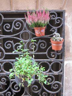 rue chateauredon by lapasserelleverte, via Flickr