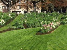 Um jardim para cuidar: Bordaduras floridas de Paris