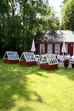 Pallkragar och gamla fönster i väntan på ett STORT växthus?!