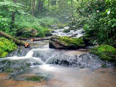 Misty Mountain Stream by Kevin's Kaptures, via Flickr