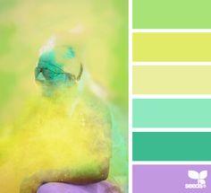 Celebrate Color~Design Seeds