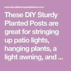 These DIY Sturdy Planted Posts are great for stringing up patio lights, hanging plants, a light awning, and so much more. Plus, they are simple to make!