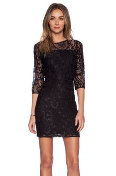 Myne Rosie Dress in Black Lace   REVOLVE