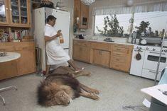 Neil in Tippi Hedren's house