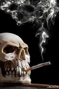 The Skull with a cigarette Gif. Skull Pictures, Gif Pictures, Dark Fantasy Art, Dark Art, Wallpaper Caveira, Comic Cat, Real Human Skull, Wallpaper Animes, Crane