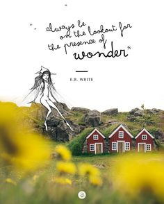 """""""Always be on the lookout for the presence of wonder."""" - E.B. White #quotes #travelquotes #iceland http://www.claudia-fakler.de/8484/islands-wilde-kreaturen/"""
