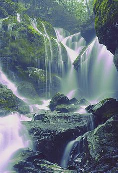 ✯ Waterfalls in the Smokey Mountains. I've always wanted to visit the Smokey Mountains. Beautiful Waterfalls, Beautiful Landscapes, Places To Travel, Places To See, Les Cascades, Jolie Photo, Great Smoky Mountains, Smoky Mountains Tennessee, East Tennessee