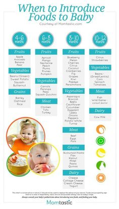 Introducing Solids- A Month by Month Schedule-Free Printable | Newborns:                                                                                                                                                                                 More