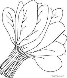 4 free printable Spinach coloring pages in vector format, easy to print from any device and automatically fit any paper size. Vegetable Coloring Pages, Fruit Coloring Pages, Coloring Book Pages, Coloring Pages For Kids, Painting For Kids, Drawing For Kids, Image Fruit, Vegetable Pictures, Food Doodles