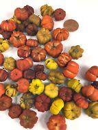 Orange & Yellow Putka Pods Mini Pumpkins Potpourri Halloween Thanksgiving Fall