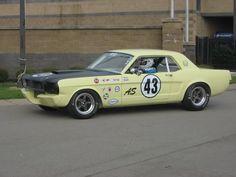 Anyone build a Trans-Am race car? - Vintage Mustang Forums