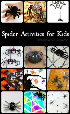 20+ spider crafts and activities for kids
