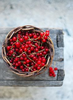 Red currants. In Finland, many ppl have currant bushes...when berries are ripe, they are boiled and then bottled as juice concentrate & drunk throughout the winter.