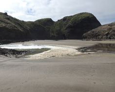 Picture taken from The Gap - South Piha - 25th October 2015 Picture taken by: Jennifer Whiting #piha #auckland #newzealand #beaches #thegap #southpiha