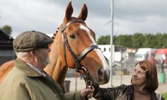 This likable documentary traces the story of the barmaid in a Welsh village pub who persuaded her regulars to fund a racehorse