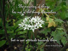 """Quote on spirituality """"The meaning of things lies not in the things themselves but in our attitude towards them."""""""