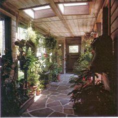house plant filled entrance