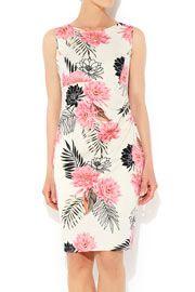 Floral Print Cotton Dress #WallisFashion