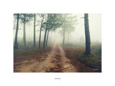 Caminos (Roads)