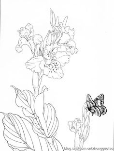 Korean Art, Asian Art, Cool Drawings, Pencil Drawings, Anemone Flower, Flowers, Floral Drawing, Chinese Painting, Silk Painting
