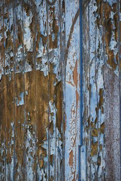 Fototapete farbiges Holz (Nr. 15999)  www.berlintapete.de