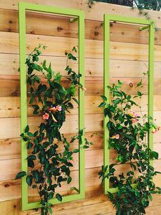 Wall Trellis, Garden Trellis, Garden Beds, Garden Art, Garden Design, Garden Shrubs, Garden Table, Garden Pool, Vertical Garden Wall