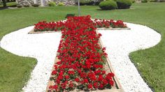 Ever wonder who supplies the geraniums for the cross flower bed at Shepard of the Hills in Greenville along highway 15 ? Now you know.
