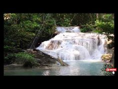Beautiful Relaxing Music for Stress Relief • Meditation Music, Sleep Mus... Calming Songs, Relaxing Music, Rainforest Music, Good Morning Music, Waterfall Sounds, Good Night Love Messages, Best Quotes Of All Time, Stress Relief Meditation, Nature Music