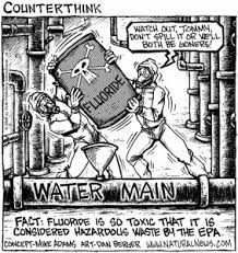 DRINK CLEAN WATER!! Say NO to the Fluoridation of Florida's water! Go to www.IdealEarthWater.com or call (727) 447-2344 for more information.