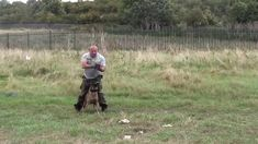 Demonstration training crowd control / tactical cqb obedience with use o...